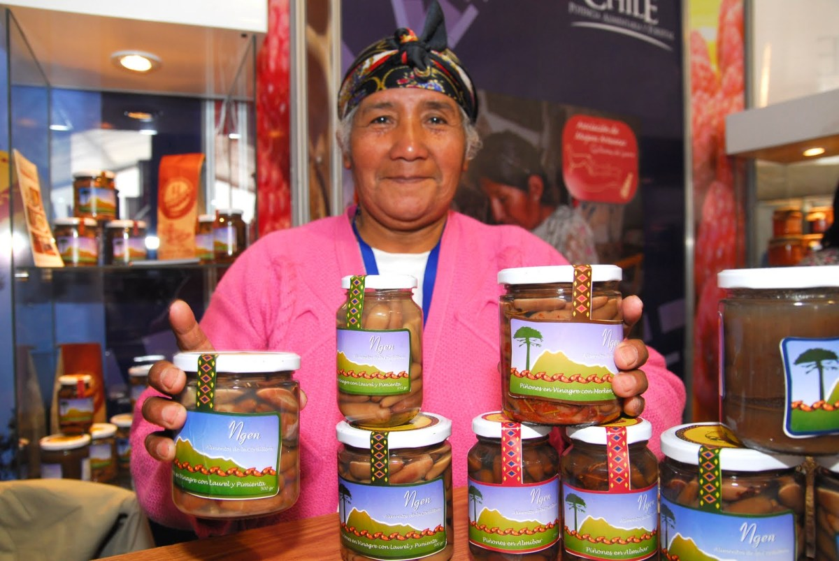 Quand le commerce équitable valorise les traditions mapuche.